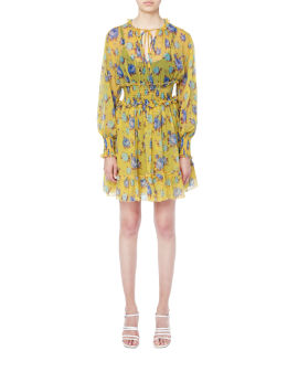 Floral print ruffles dress